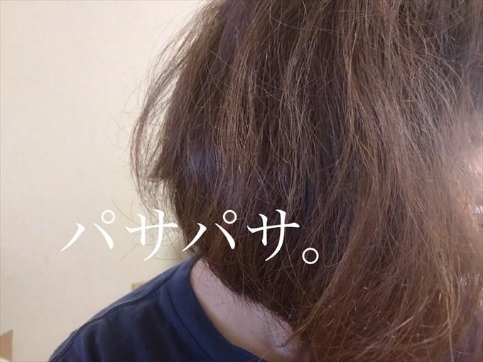 パサパサの髪の毛